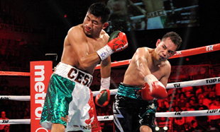 Nonito Donaire survived cramps and a 12-round unanimous decision victory over Cesar Juarez of Mexico to win the vacant World Boxing Organization super bantamweight title last Dec. 11 in San Juan, Puerto Rico (Photo by Top Rank)