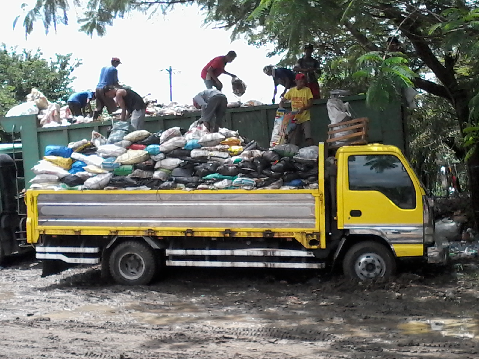 Auditors To City Hall Don T Get Garbage Collection